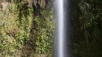 St Lucia Shore Excursion: A Tour of St Lucia