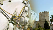 Jerez Historic Guided Tour with Horse Show, Cádiz, City Packages