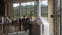 Bogotá Beer Company's Brewery Tour, Bogota