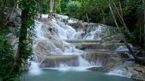 Ocho Rios Shore Excursion: Private Dunn's River Falls Tour, Ocho Rios, Private Sightseeing Tours