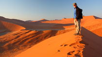 10-Day Namibia Tour from Windhoek , Windhoek, Multi-day Tours