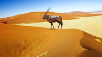 13-Day Classic Namibia, Windhoek, Cultural Tours