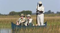 7-Day Botswana Guided Tour from Maun, Maun, Multi-day Tours