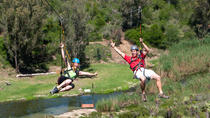 Port Elizabeth Shore Excursion: Addo Zipline Tour and Giant Swing Experience, Port Elizabeth