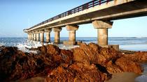 Port Elizabeth Shore Excursion: Half Day City Tour including SAMREC, Port Elizabeth, Ports of Call...