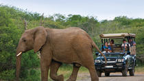 Richards Bay Shore Excursion: Hluhluwe Safari and DumaZulu, KwaZulu-Natal, Ports of Call Tours