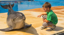Ushaka Marine World in Durban, Durban, Attraction Tickets