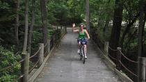Mount Vernon Bike Trail: tour indipendente con opzionale Potomac River Cruise, Washington DC, Tour ...