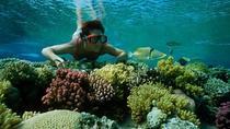 Snorkel Trip from Sharm El-Naga Bay Hurghada, Hurghada, Snorkeling