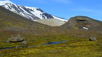 Full-Day Valley of the Thieves Tour from Laugarfell, East Iceland, Day Trips