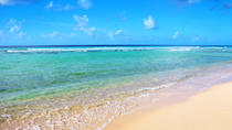 Barbados Coastal Tour with Buffet Lunch, Barbados, Day Trips