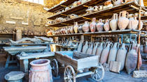 Discover the Ancient Ruins of Pompeii: Day Trip from Rome, Rome, Day Trips