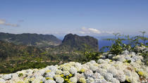 Full Day East Madeira - Camacha, Pico do Ariero, Ribeiro Frio, Portela, Santana, Madeira, Hop-on ...