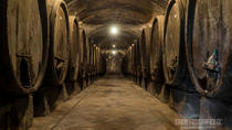 Wine Tasting Tour in a Historical Wine Cellar, Chianti, Wine Tasting & Winery Tours