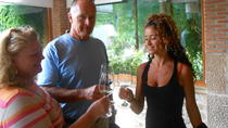 Essential Rioja Private Wine Tour from Bilbao, Bilbao, Wine Tasting & Winery Tours