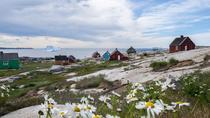 Day trip to Oqaatsut, Ilulissat, Day Trips