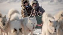 Dogsledding Trip in Ilulissat, Ilulissat, Cultural Tours