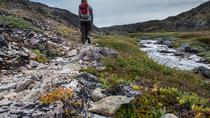 Hiking and Inuit village experience, Ilulissat, Hiking & Camping