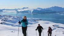 Ilulissat Snowshoeing Walk, Ilulissat, Ski & Snow