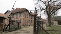 Auschwitz-Birkenau Memorial and Museum from Krakow, Krakow, Day Trips