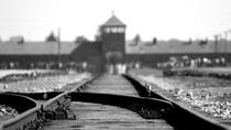Combo Tour to Auschwitz-Birkenau and Wieliczka Salt Mine, Krakow, Day Trips