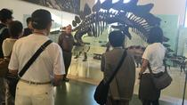 American Museum of Natural History Early Access VIP Tour
