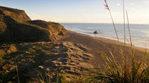 Full-Day Wild West Coast Photo and Discovery Tour including Lunch from Auckland, Auckland, null