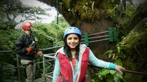 Combo Tour: Monteverde Cloud Forest Nature Tour and Night Walk, Monteverde, Eco Tours