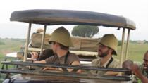 3-Day Safari in Queen Elizabeth National Park from Kampala, Kampala, Multi-day Tours