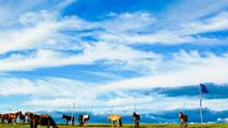 8-Day Tour: Taste of Mongolia, Ulaanbaatar, Multi-day Tours