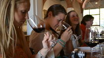 Half-Day Chianti Tour to 3 Wineries with Wine Tastings and Meal