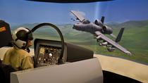 30-Minute Flight Simulator Experience in Denver, Denver, Family Friendly Tours & Activities