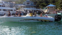 St Lucia Land and Sea Tour, St Lucia, Full-day Tours