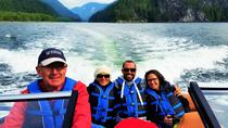 Seal Colony 3-Hour Boat Rental for 5 to 6 People, Vancouver, Boat Rental