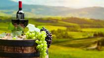 Istra Wine Tour from Pula, Pula, Wine Tasting & Winery Tours
