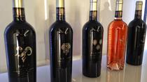 Order your bottle of vine from local vinary, Dubrovnik, Food Tours