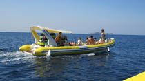 Private Cruise Tour from Dubrovnik, Dubrovnik, Day Cruises