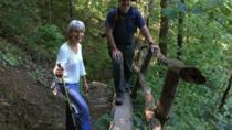 Smokys Abandoned Resort Town Hike and Walking Tour, Great Smoky Mountains National Park, Hiking &...