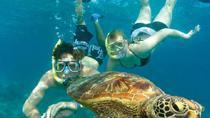 Snorkelling at Semizce, Muğla, Day Trips