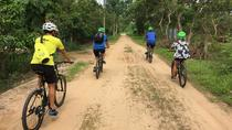 Experience the real Mekong Countryside by Bike - One Day Trip, Ho Chi Minh City, Bike & Mountain ...