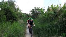 See Mekong Delta by Bike - Two Days, Ho Chi Minh City, Bike & Mountain Bike Tours