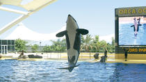 Loro Park and Siam Park Twin Ticket with Transfer to Loro Park, Tenerife, null