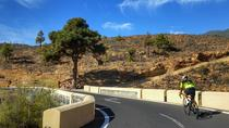 Road Cycling Tenerife - West Coast Route, Tenerife, 4WD, ATV & Off-Road Tours