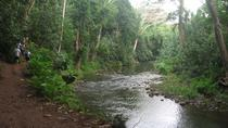 Wailua River and Secret Falls Kayak and Hiking Tour, Kauai, Hiking & Camping