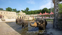 Zoo Hannover Eintrittskarte, Hannover, Zoo Tickets & Passes