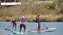 Introductory Stand Up Paddleboard Experience from Anglesea, Victoria, Stand Up Paddleboarding