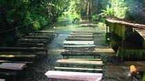 Private Tour: Villa Escudero with Lunch from Manila, Manila, Day Trips