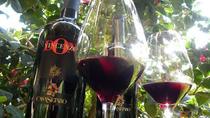 Vesuvius Wine Tour Lacryma Christi, Positano, Wine Tasting & Winery Tours