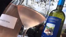 Wine Tour Amalfi Coast Italy, Amalfi, Wine Tasting & Winery Tours