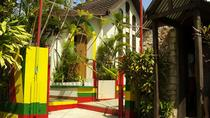 Legends and Falls - Bob Marley Combo from Negril, Montego Bay, Day Trips